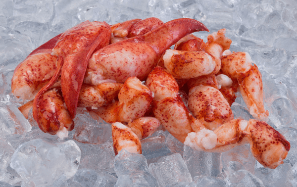 Lobster Knuckles & Claw Meat